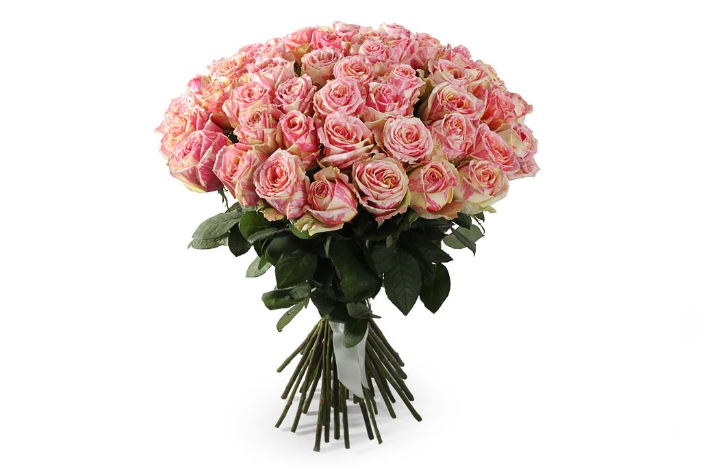 Букет 51 роза Фиеста фото