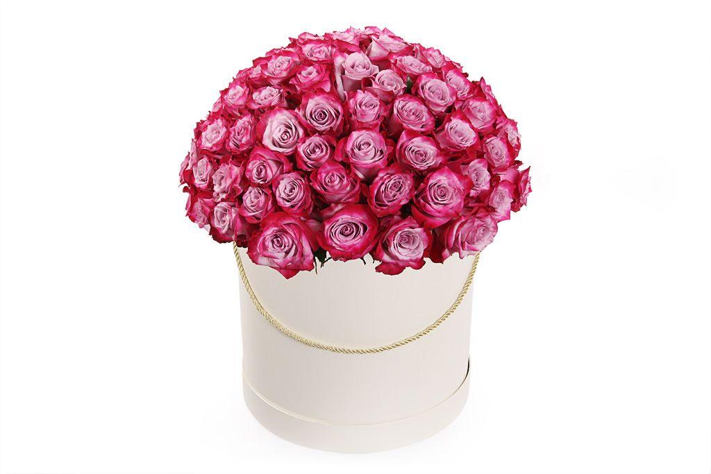 Букет 101 роза Дип Перпл в шляпной коробке фото