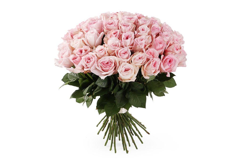 Букет 51 роза Пинк О'Хара фото