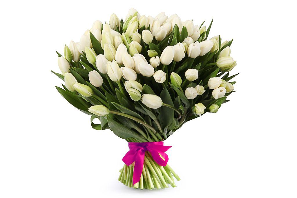 Букет 101 королевский тюльпан, белые фото