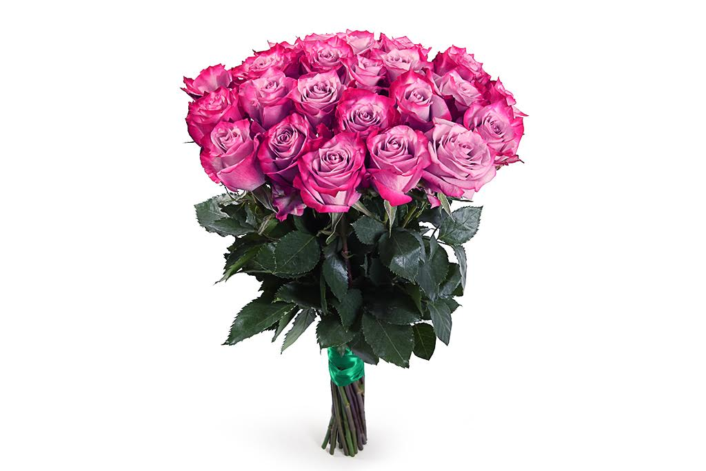 Букет 25 роз Дип Перпл фото
