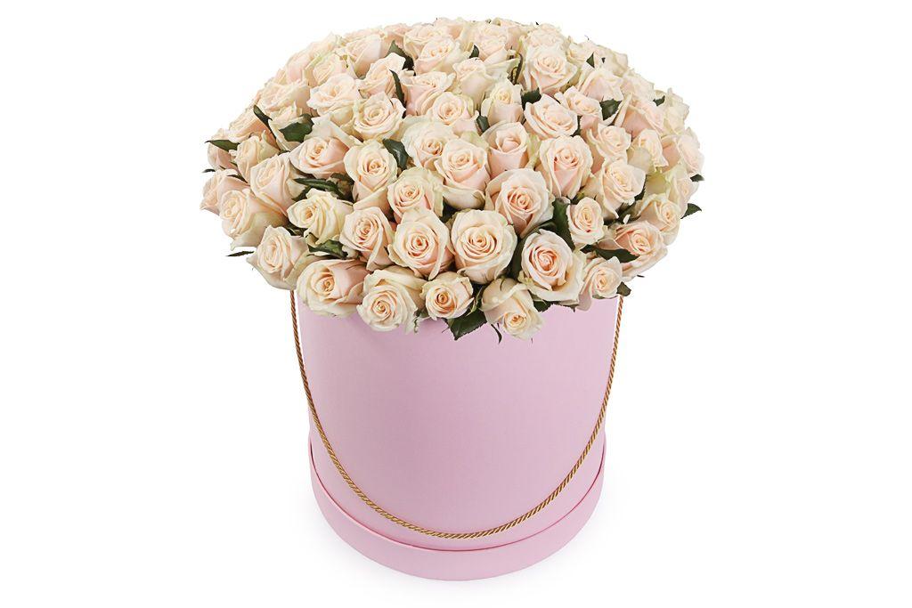 Букет 101 роза Талея в шляпной коробке фото