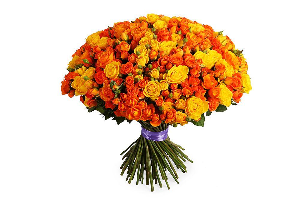 Букет Пламя любви, 101 роза микс фото