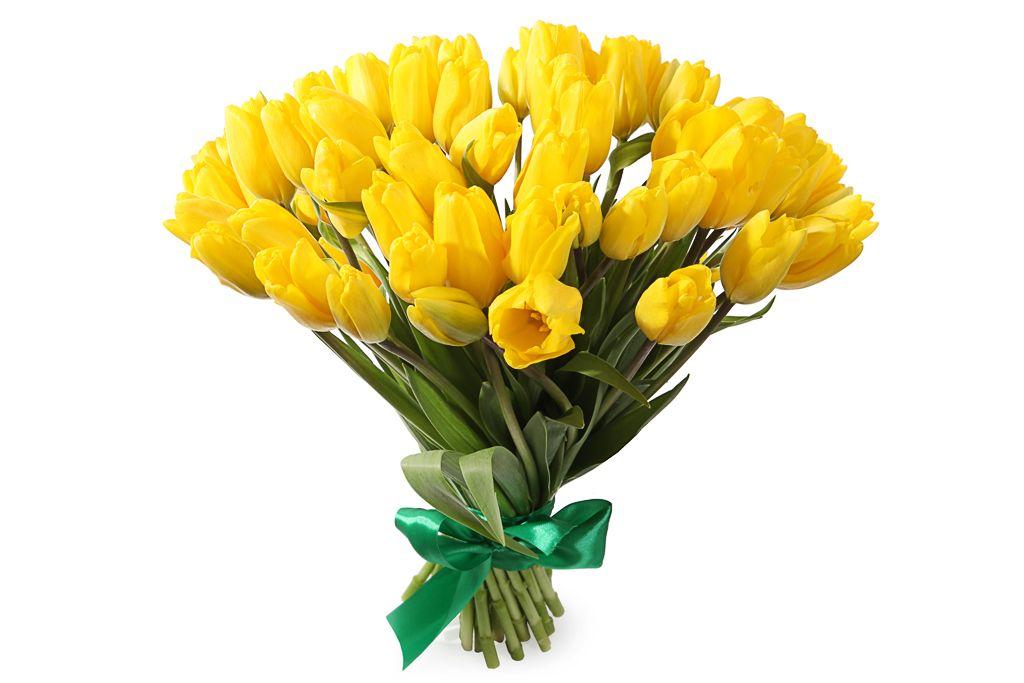 Букет 51 королевский тюльпан, желтые фото