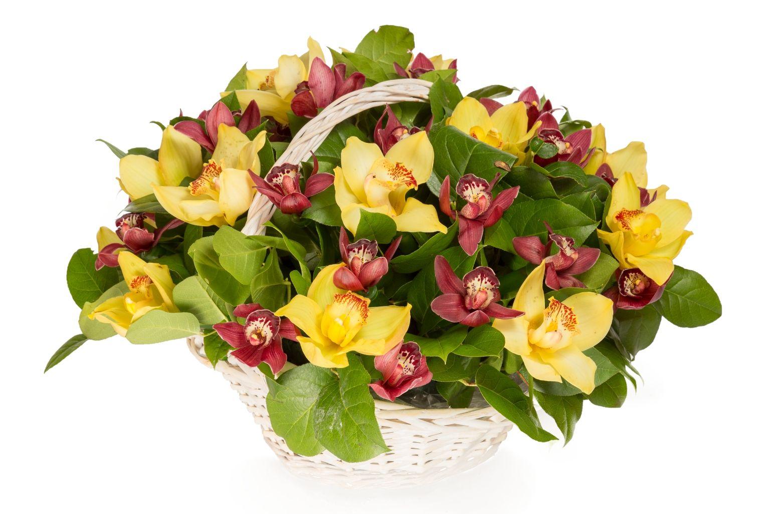Букет с орхидеями Крошка Доррит в корзине фото