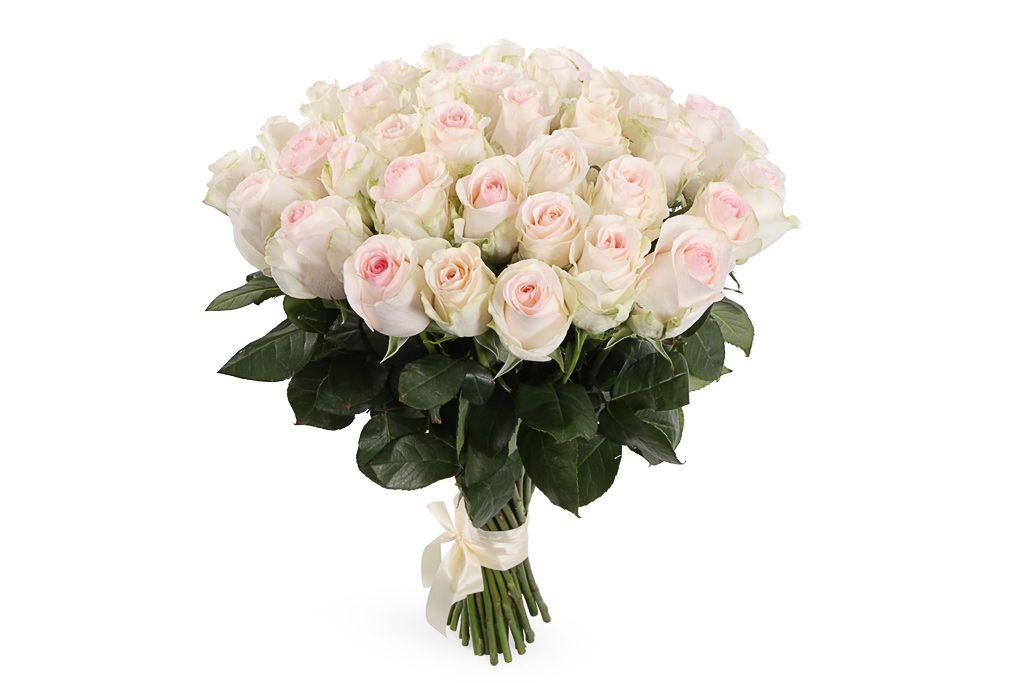 Букет 41 роза Сеньорита фото
