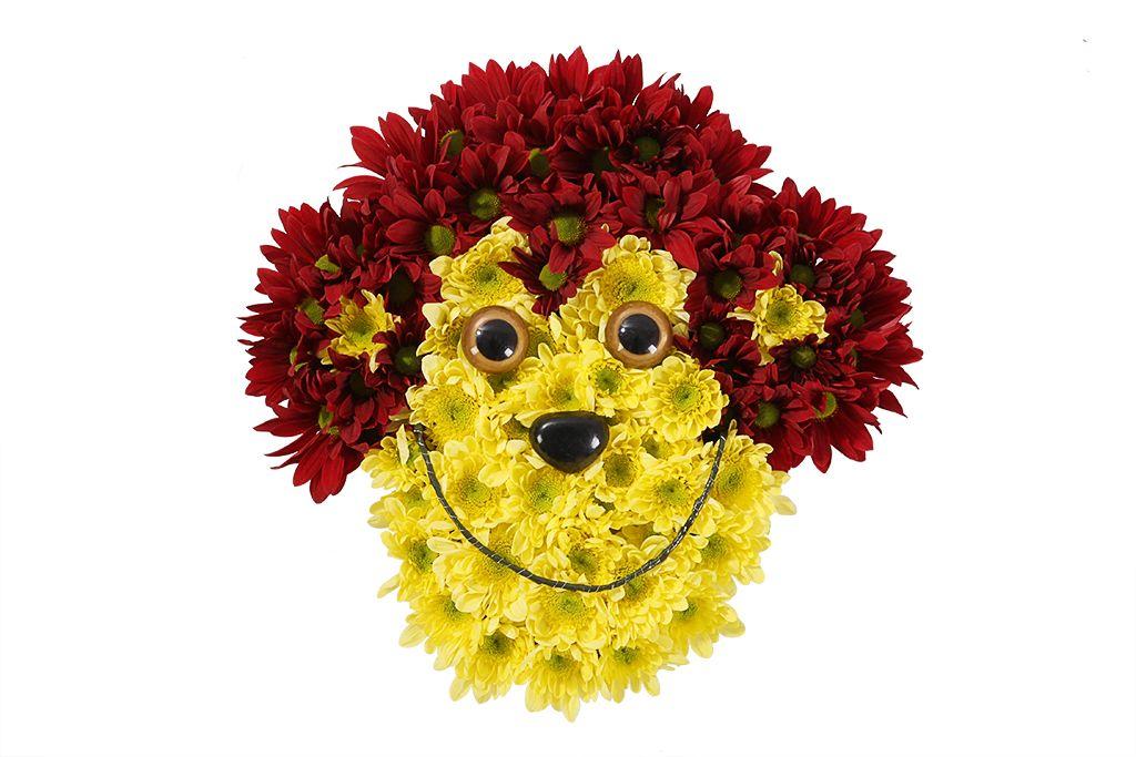 смешные букеты цветов фото всю страну