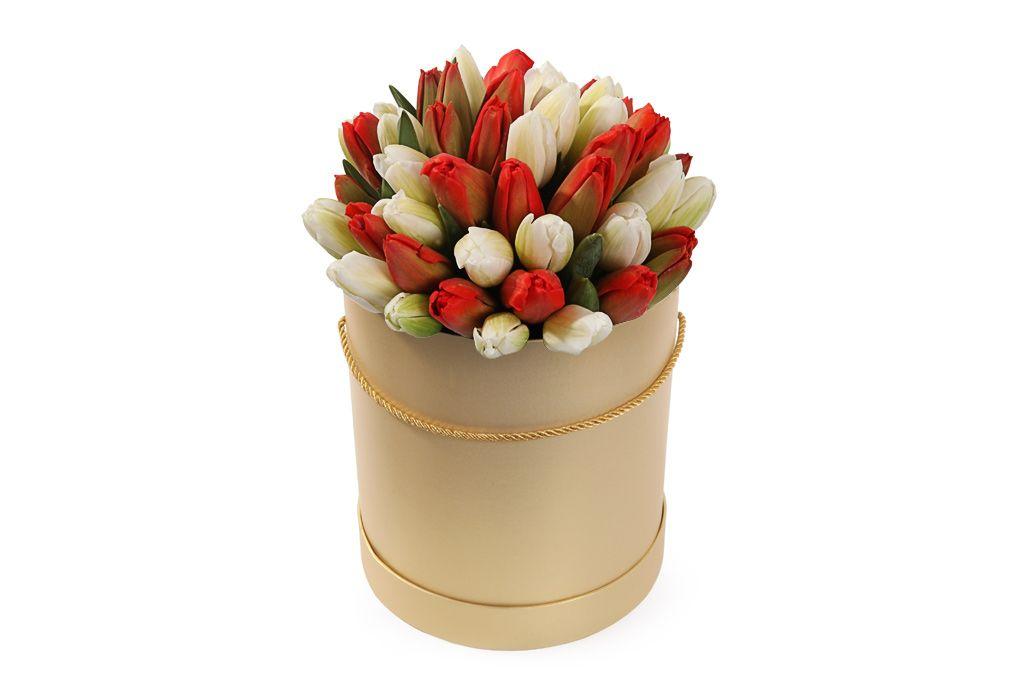 Букет 51 королевский тюльпан в золотой коробке, красно-белый микс фото