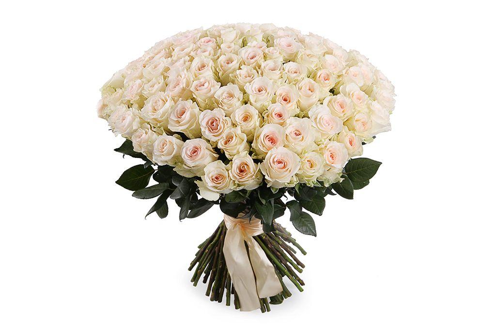 Букет 101 роза Сеньорита фото