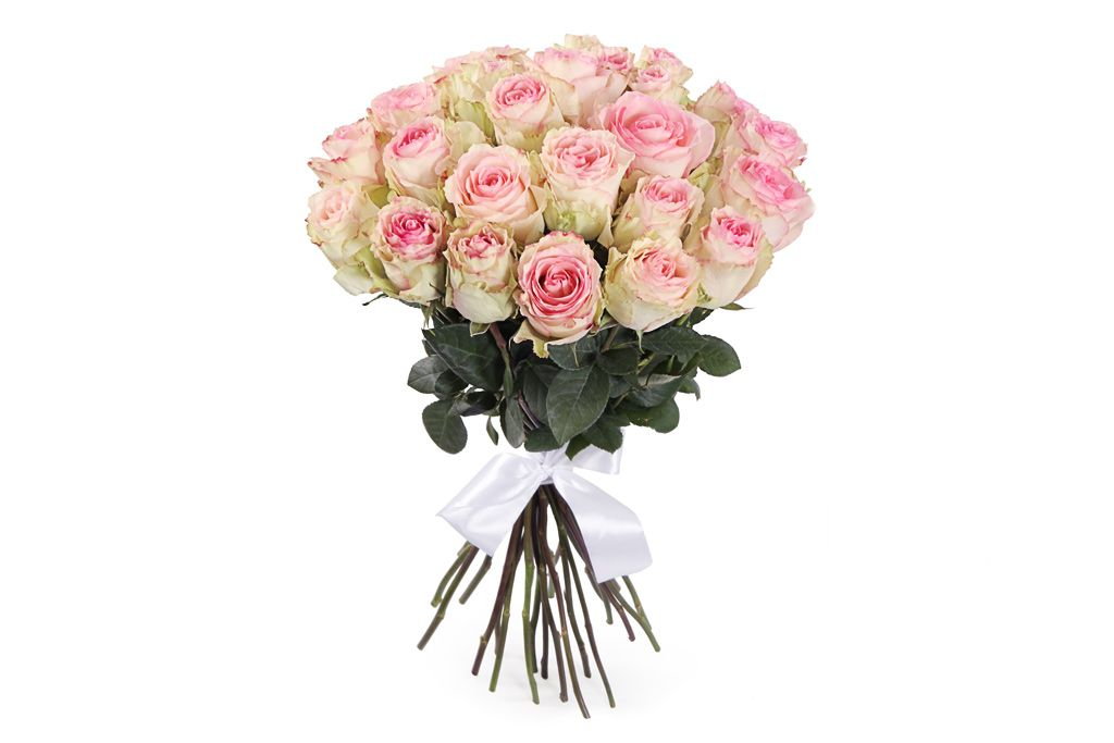 Букет 25 роз Эсперанс фото