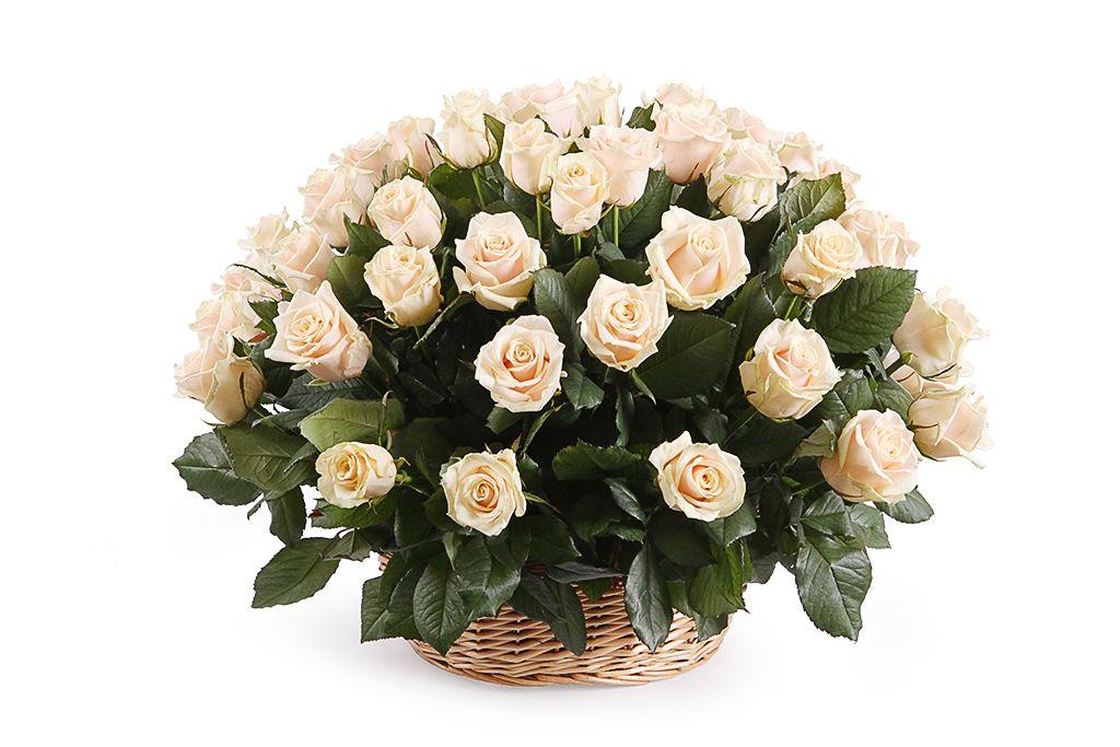 Букет 51 роза Талея в корзине фото