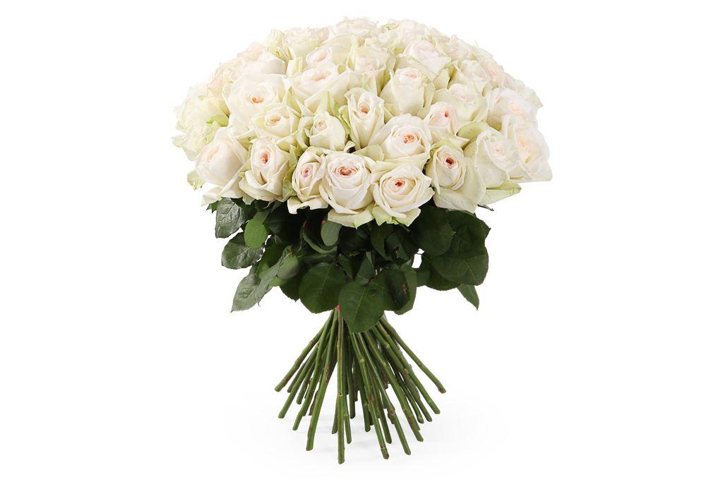 Букет 51 роза Вайт О'Хара фото