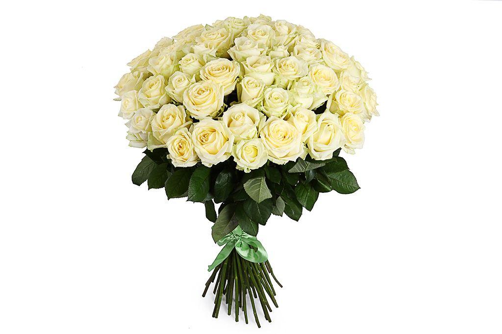 Букет 51 роза Полярная звезда фото