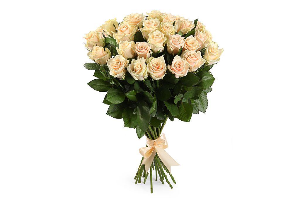 Букет 25 роз Талея фото