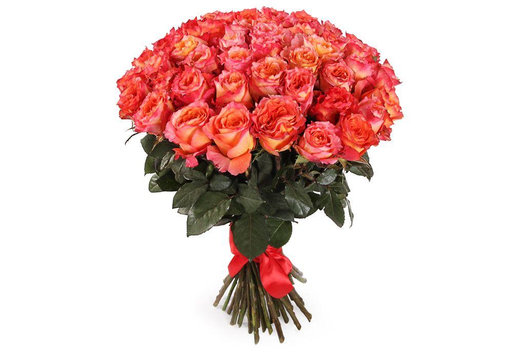 Букет 51 роза Фри Спирит фото
