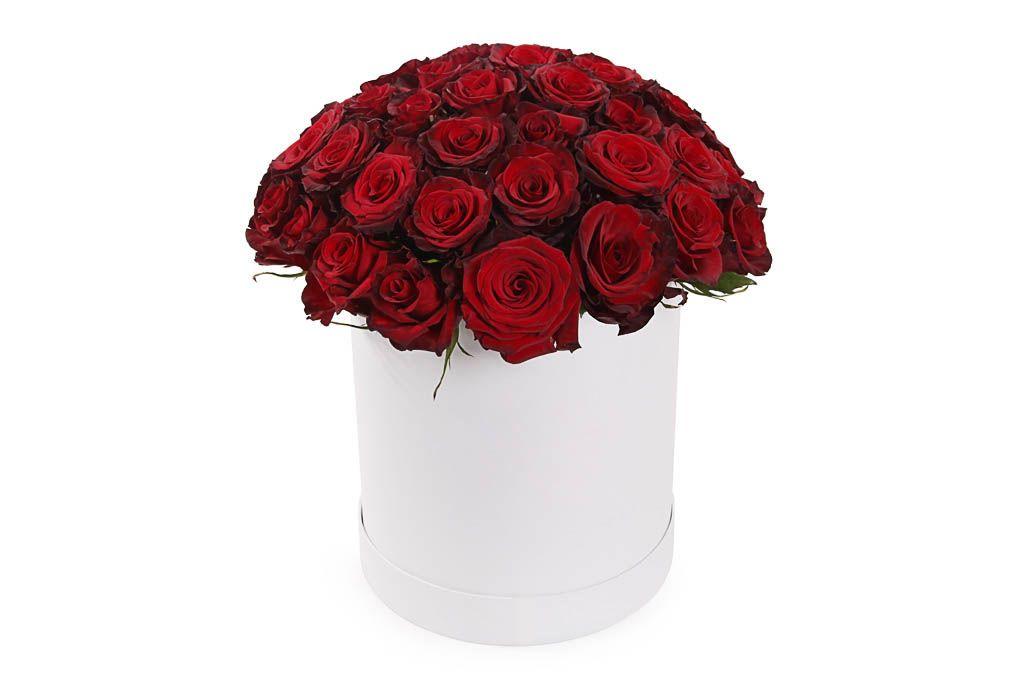 Букет 51 роза Ред Париж в шляпной коробке фото