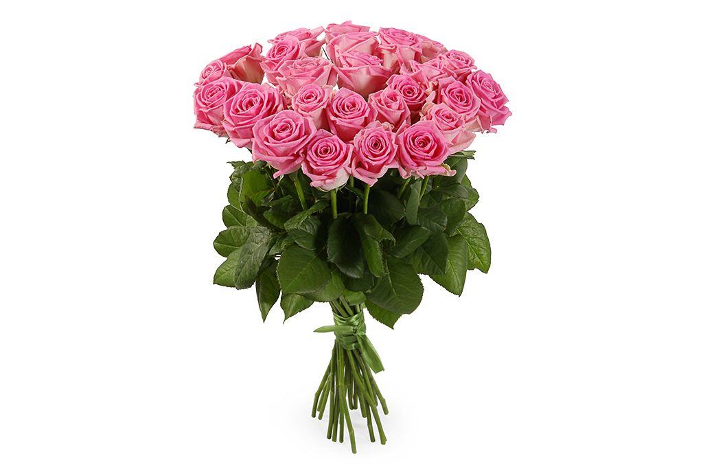 Букет 25 роз Аква фото