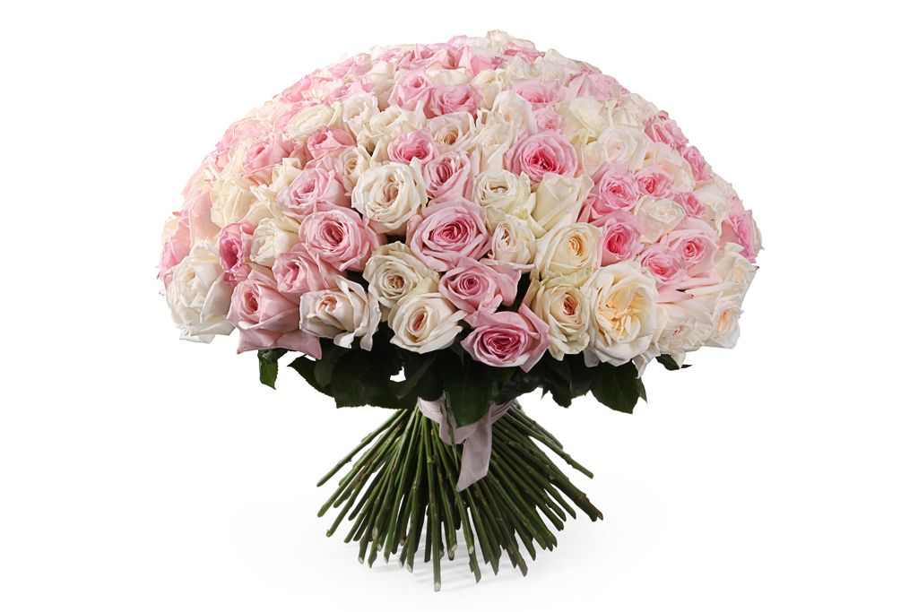Букет Любовный нектар (151 роза О'Хара) фото