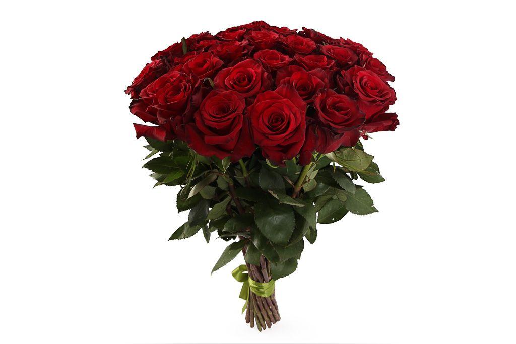Букет 31 роза Ред Париж фото