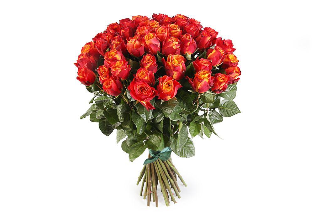 Букет 51 роза Атомик фото