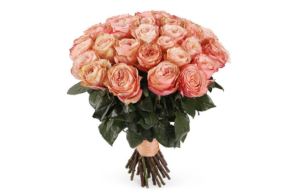 Букет 35 пионовидных роз Кахала фото