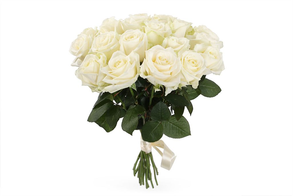 Букет 19 роз Аваланш 60/70 см фото