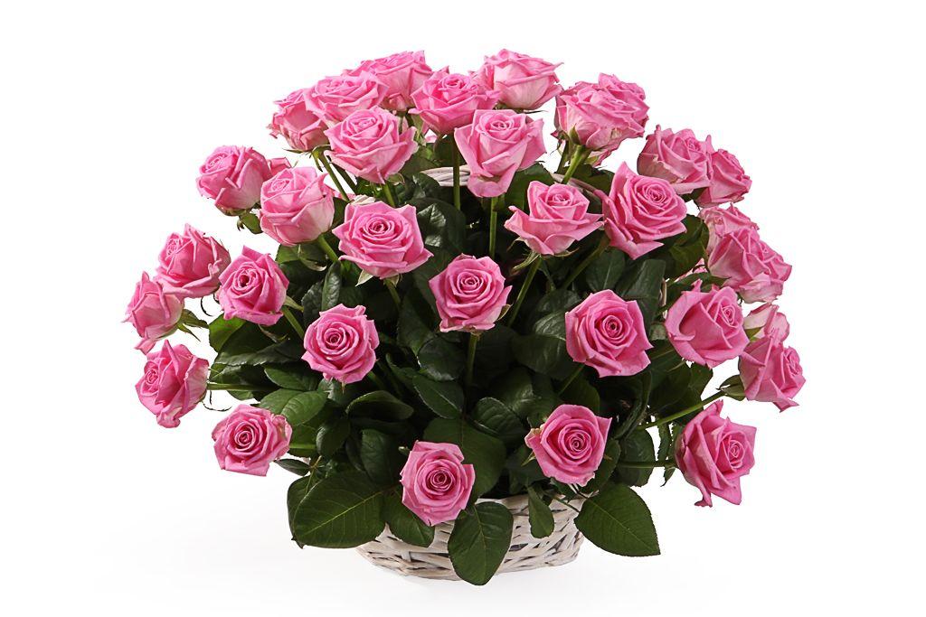 Букет 51 роза Аква в корзине фото