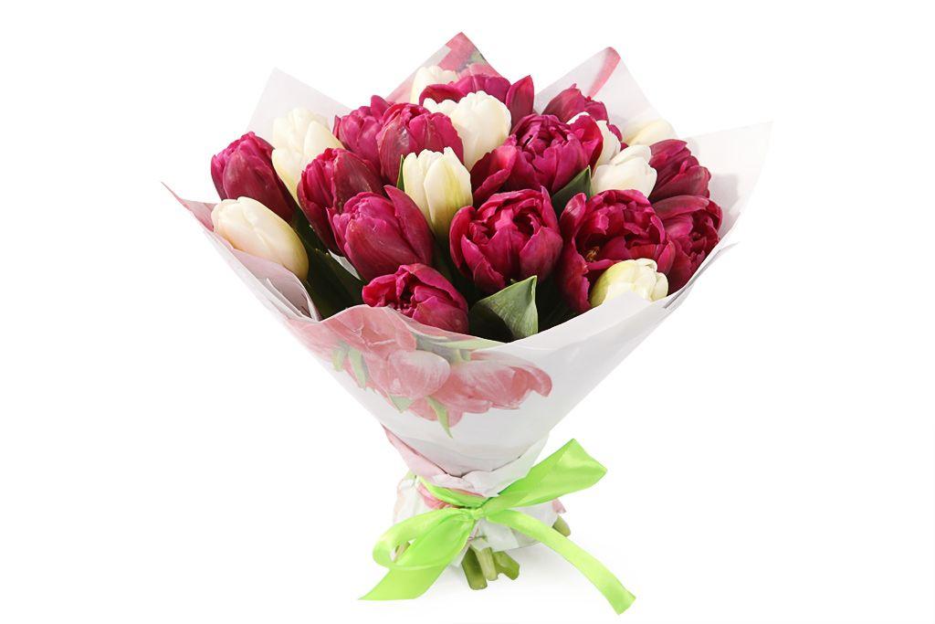 Букет 25 королевских тюльпанов, малиновый микс фото