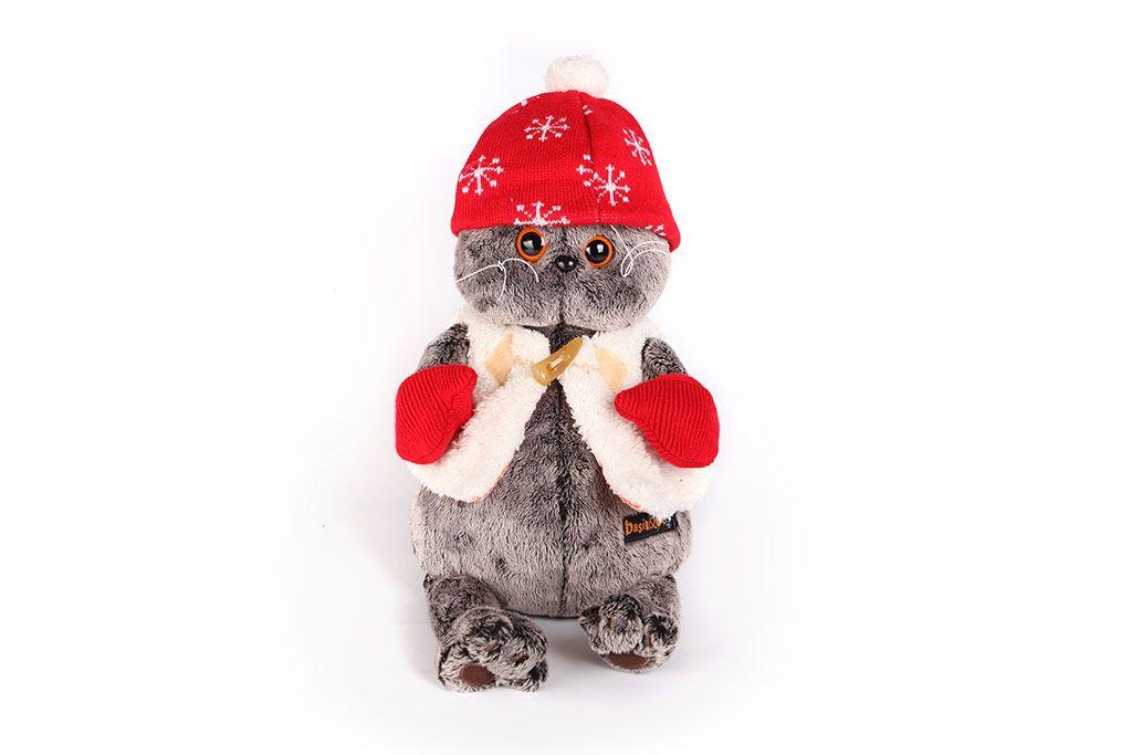 Кот Басик в варежках и шапочке фото