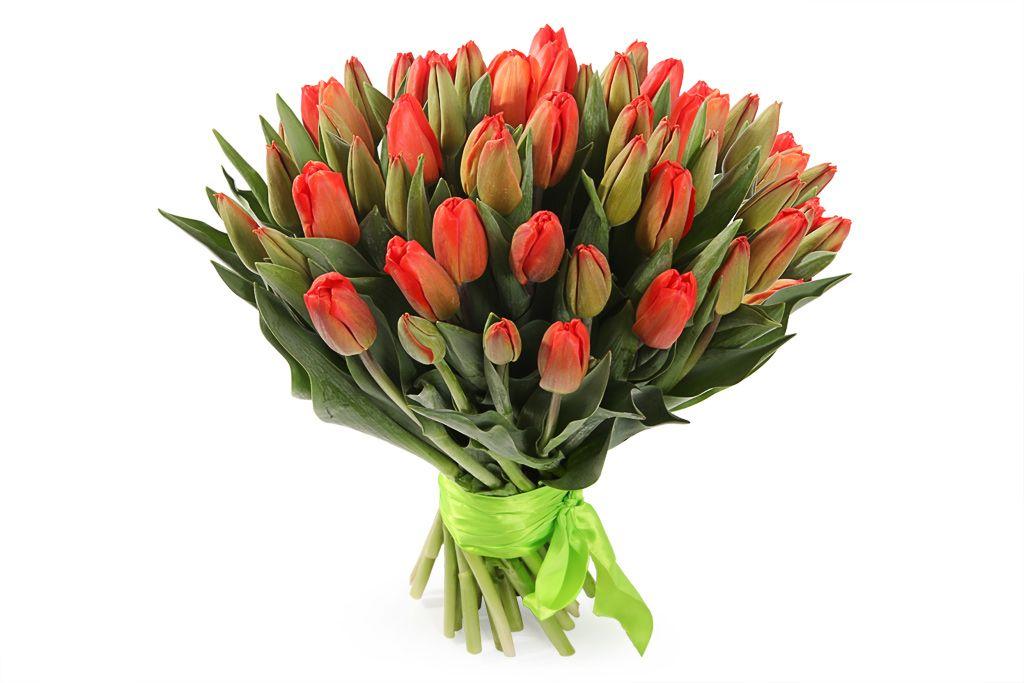 Букет 51 королевский тюльпан, красно-оранжевые фото