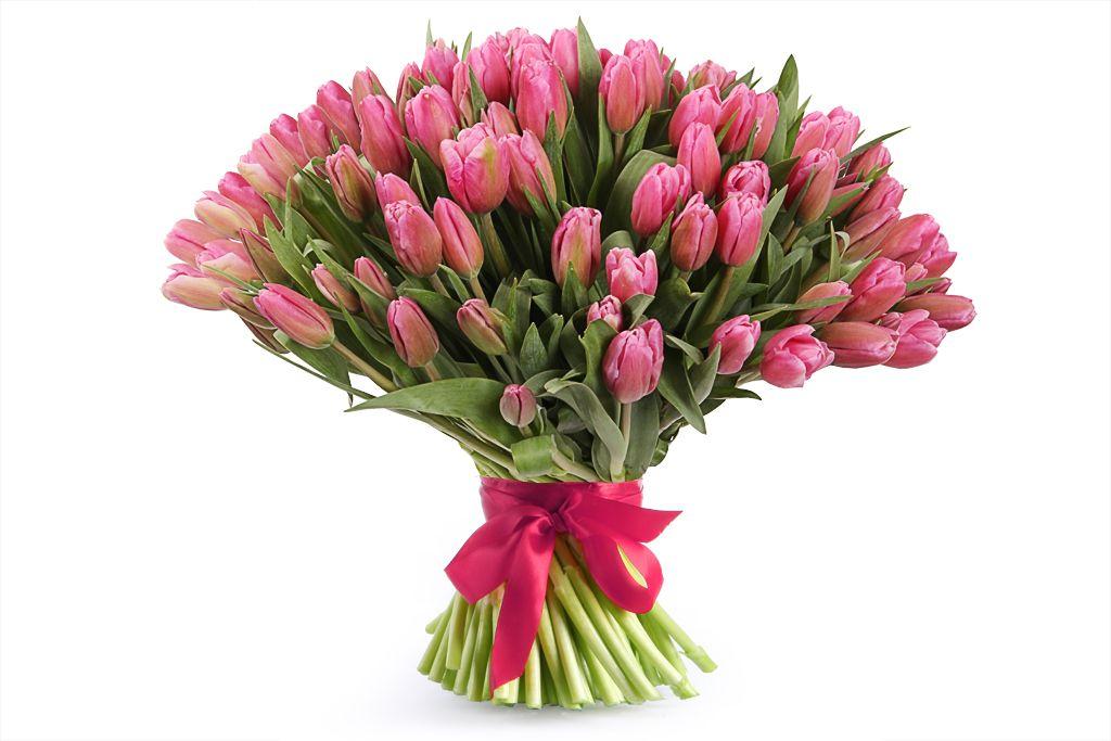 Букет 101 тюльпан, розовые фото