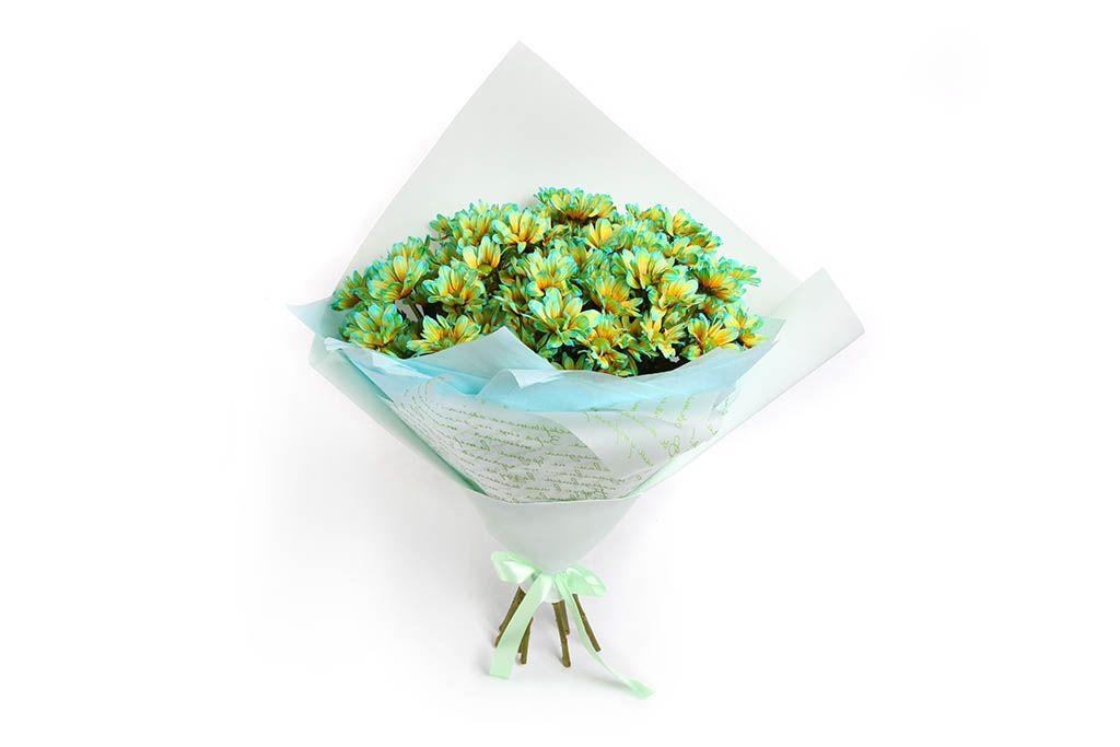 Букет 11 кустовых хризантем (двухцветные бирюзовые) фото