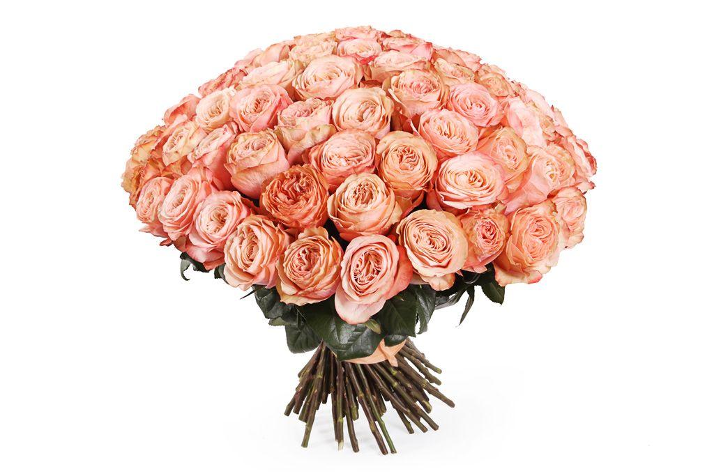 Букет 101 пионовидная роза Кахала фото