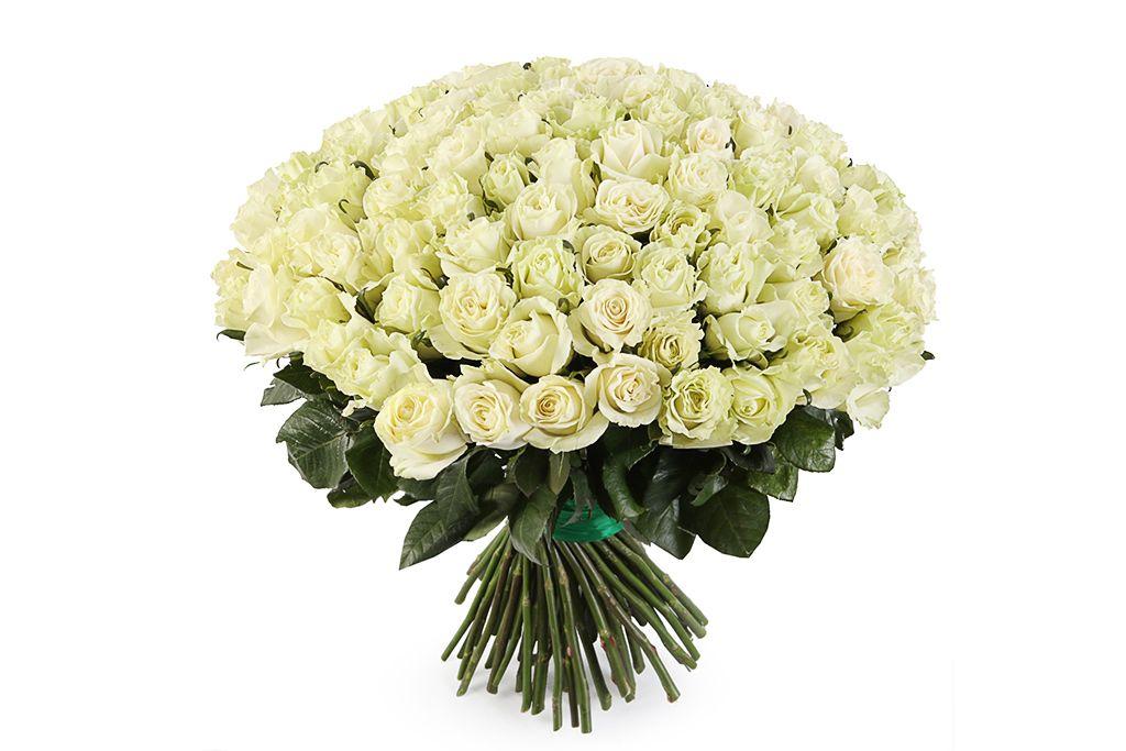 Букет 101 роза Мондиаль фото