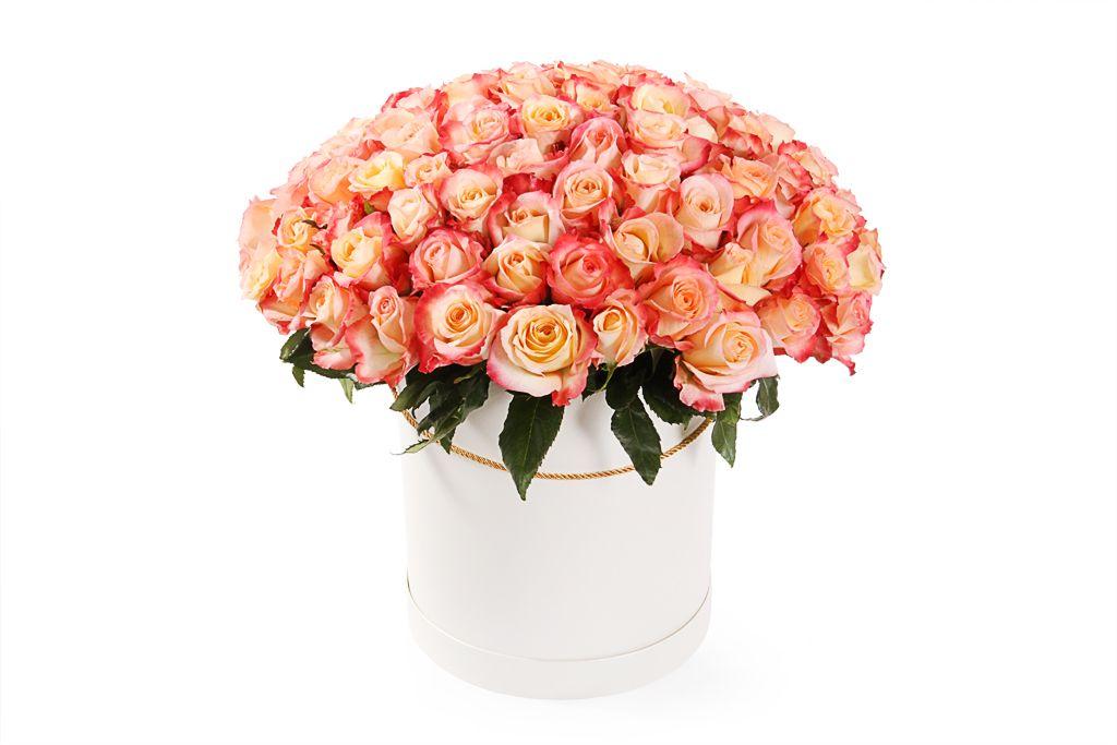 Букет 101 роза Кабаре в шляпной коробке фото