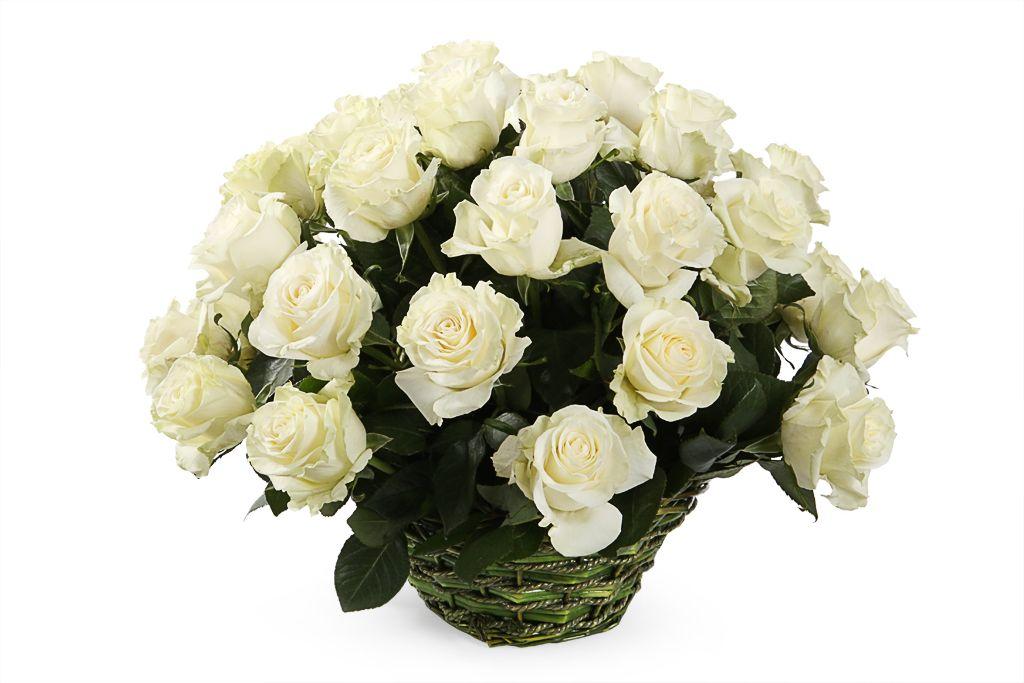 Букет 35 роз Мондиаль в корзине фото