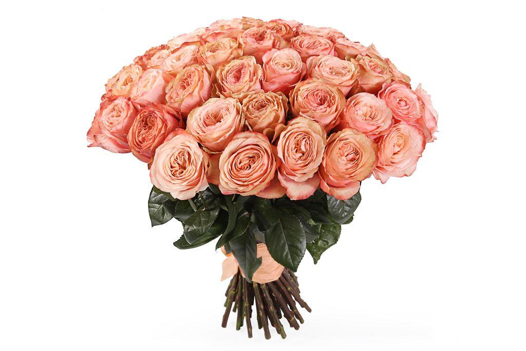 Букет 51 пионовидная роза Кахала фото
