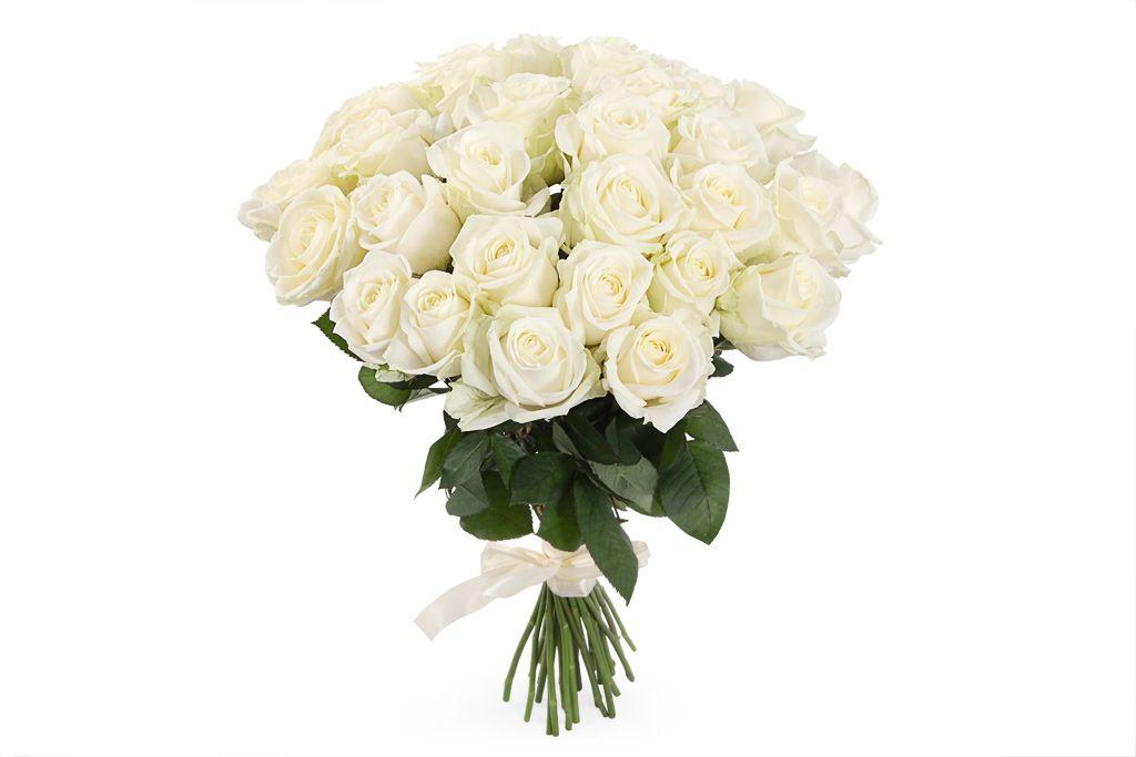 Букет 31 роза Аваланш 60/70 см фото