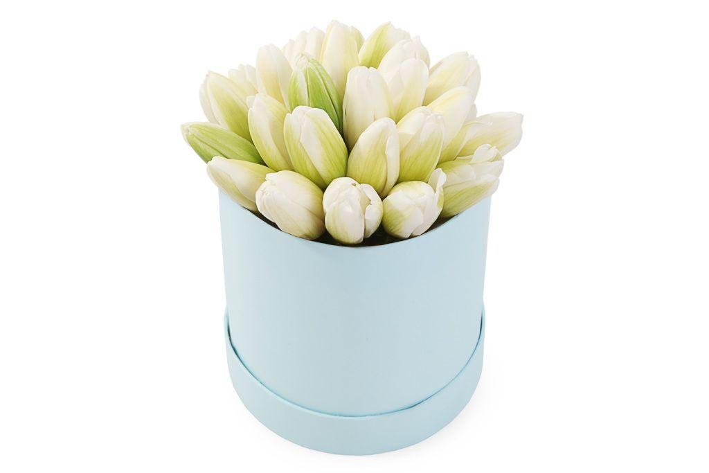 Букет 25 королевских тюльпанов в голубой коробке, белые фото