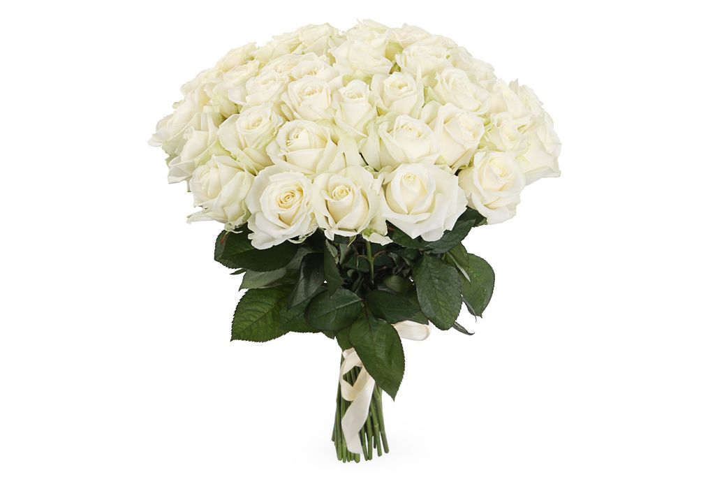Букет 41 роза Аваланш 60/70 см фото