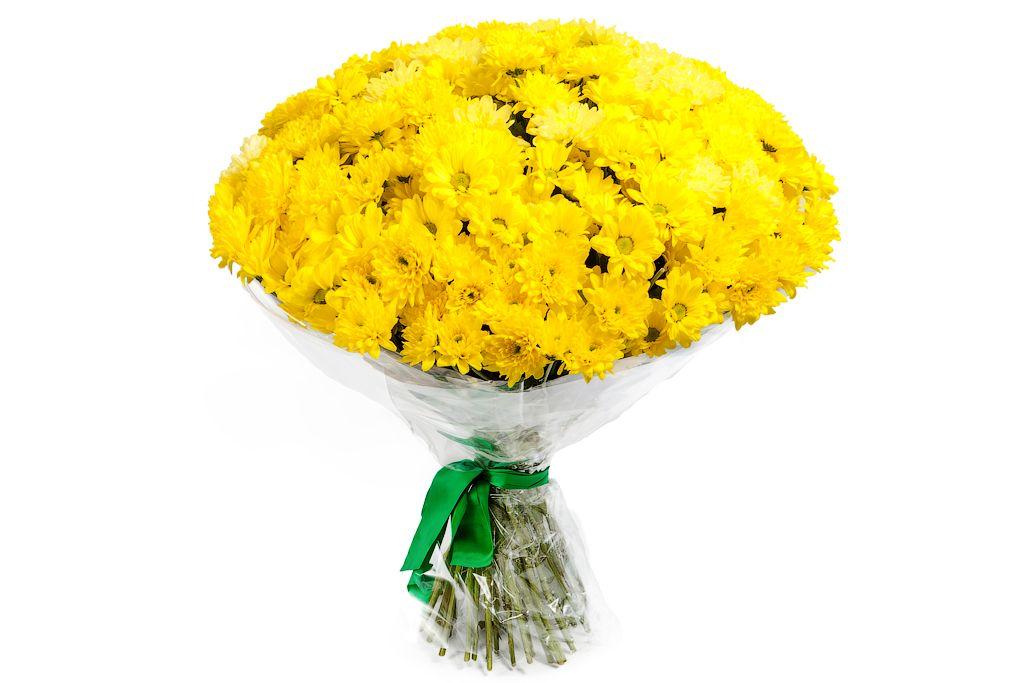 Букет 51 хризантема фото