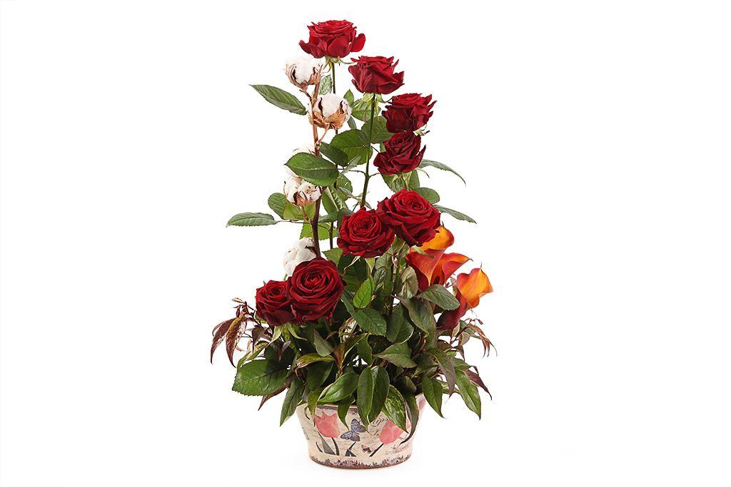 Букет Цветение розы фото