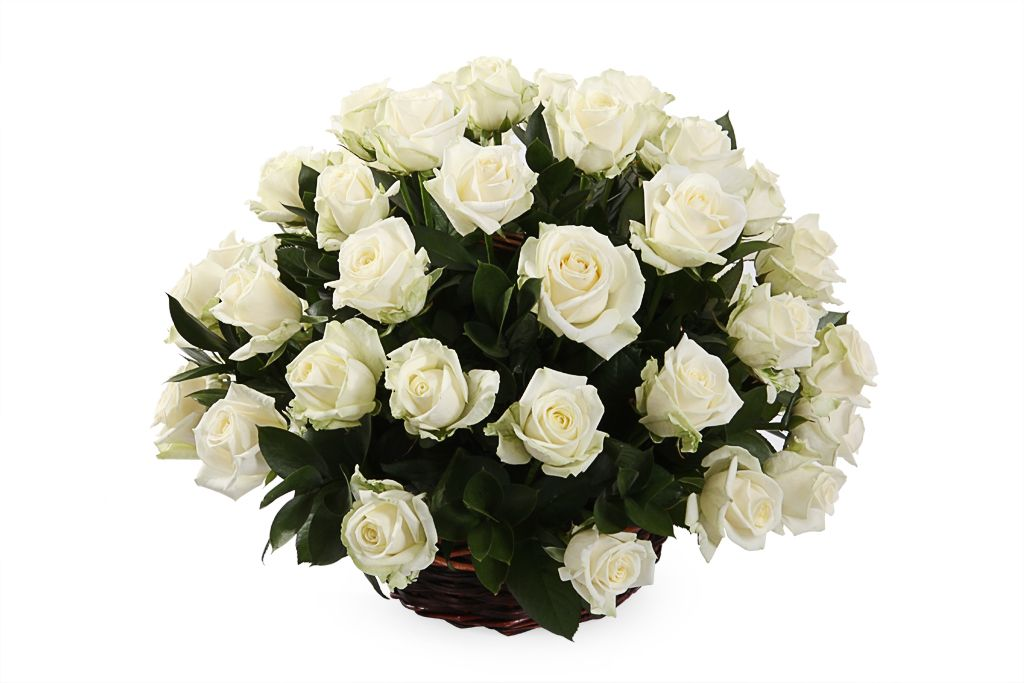 Букет 51 роза Аваланш в корзине фото
