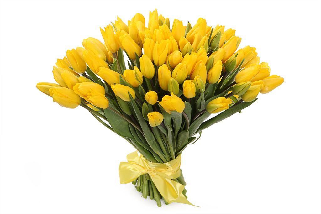 Букет 101 королевский тюльпан, желтые фото
