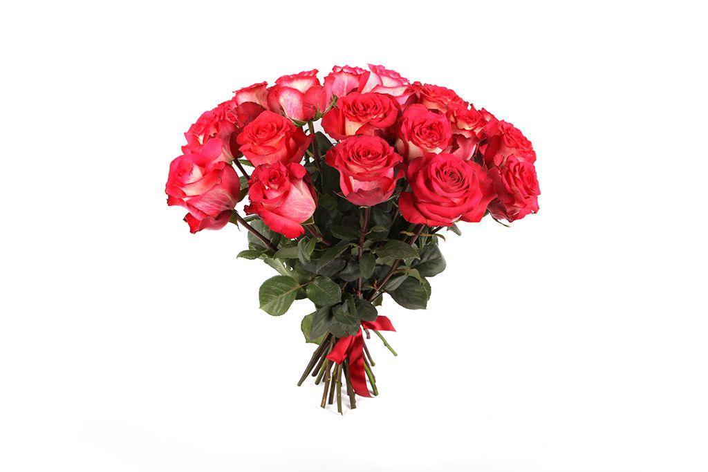 Букет 25 роз Игуазу фото
