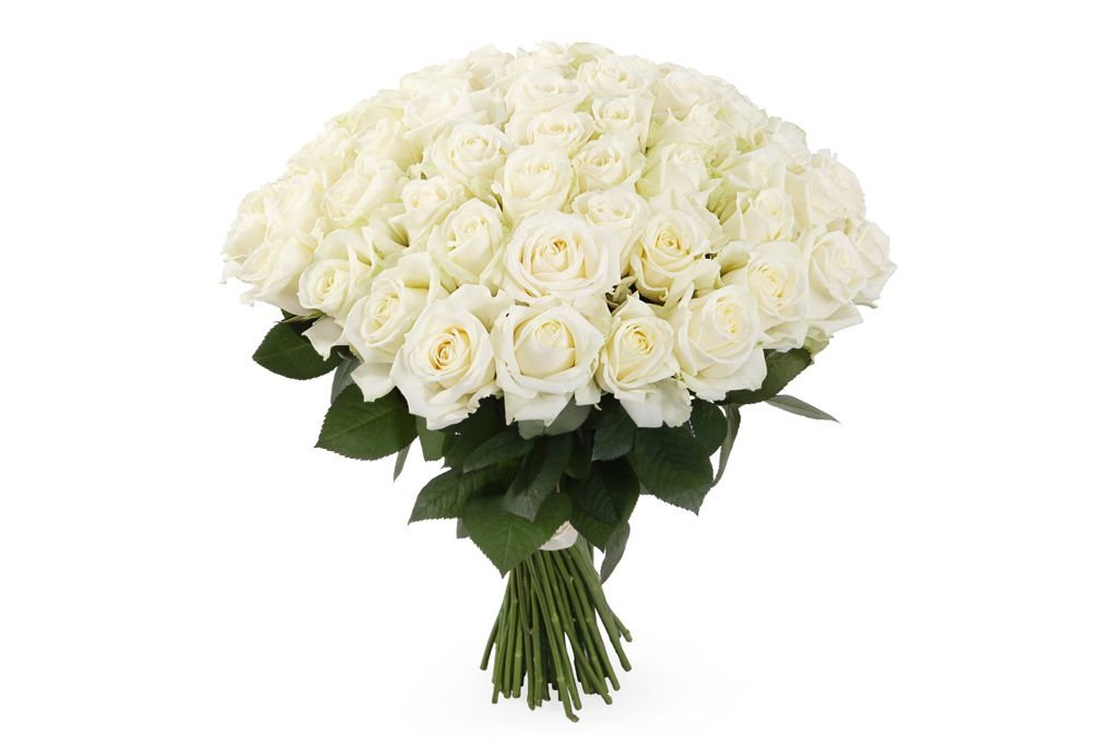 Букет 71 роза Аваланш 60/70 см фото