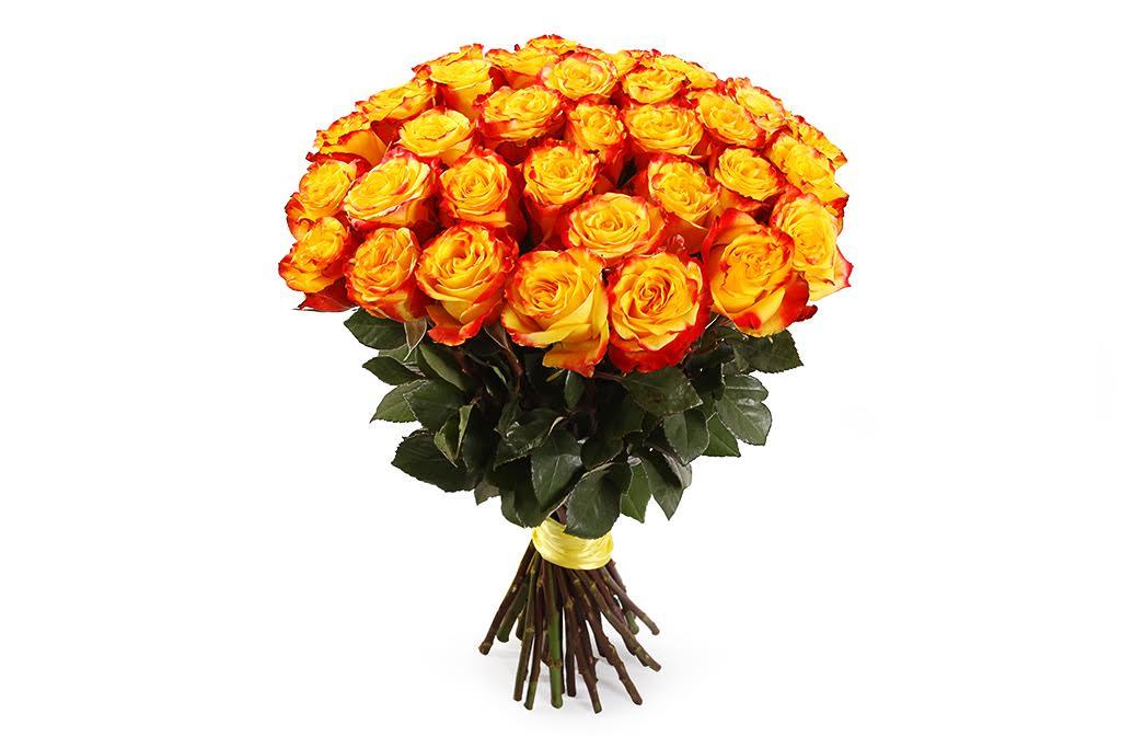 Букет 35 роз Хай Еллоу фото