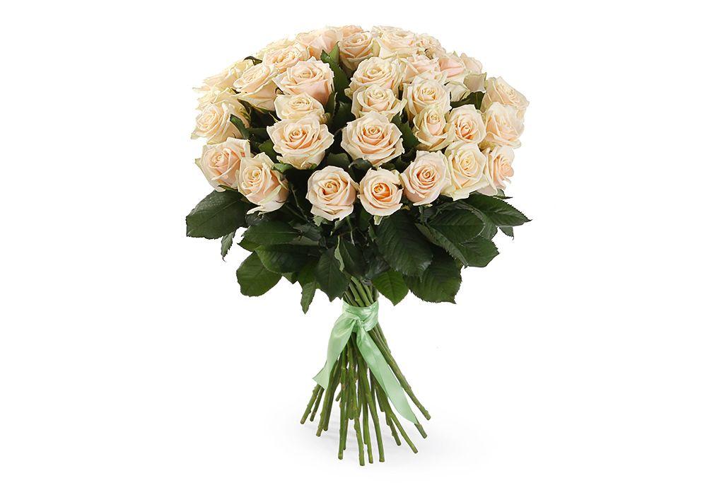 Букет 35 роз Талея фото