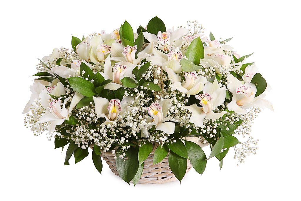 Букет с орхидеями Симфония в корзине фото