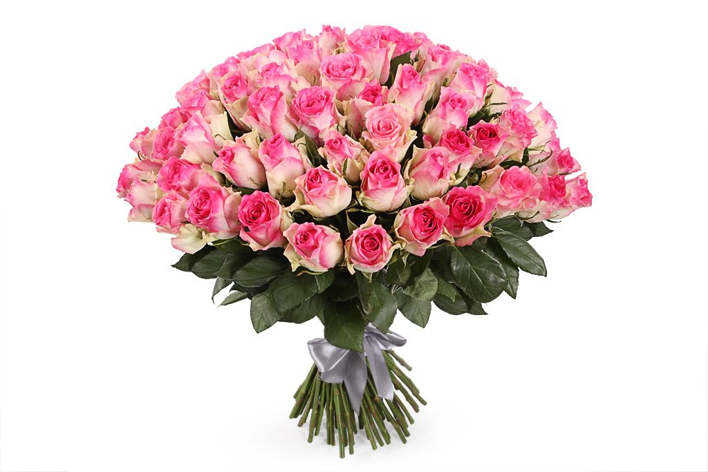 Букет 101 роза Малибу фото